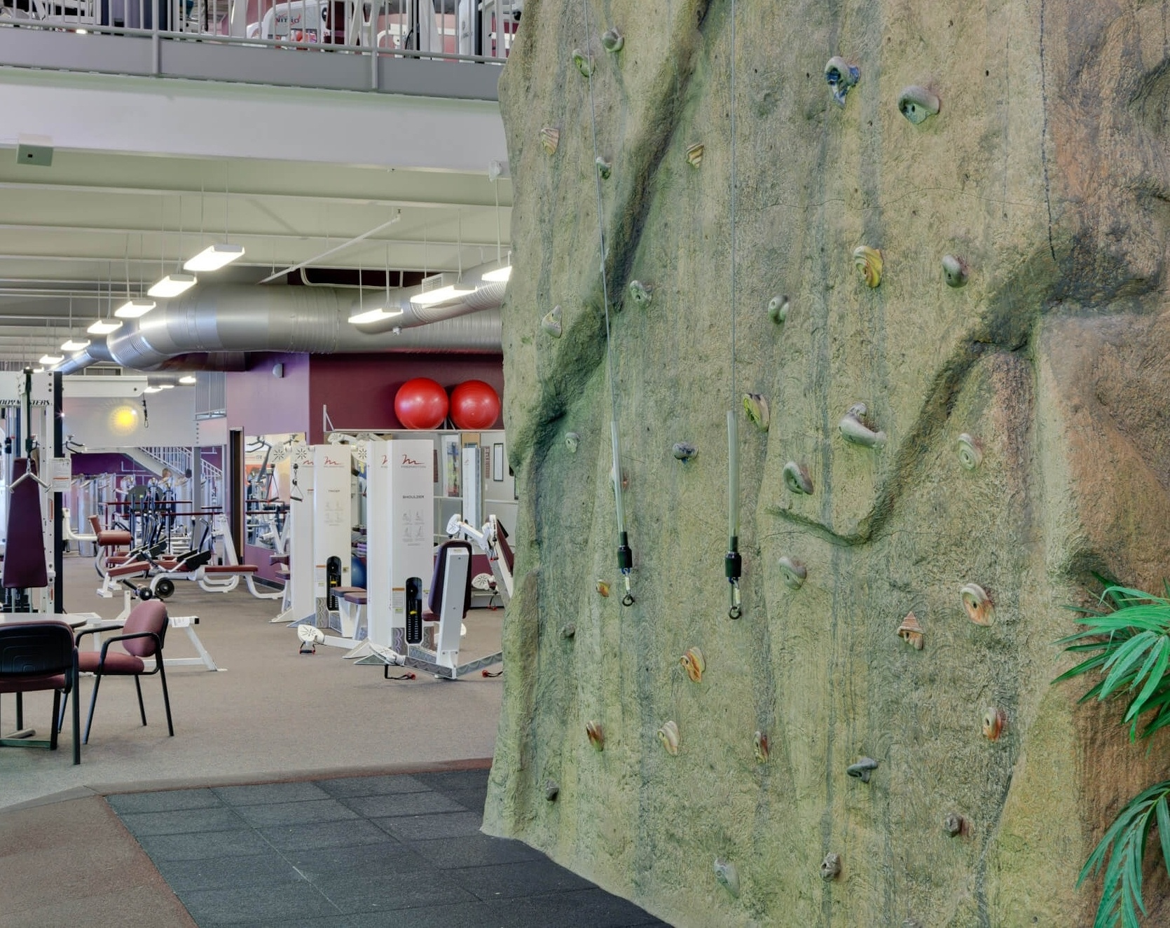 cal fit gym with indoor rock climbing wall
